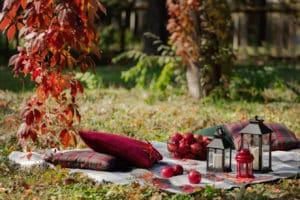 So gelingt das perfekte Vintage Picknick für den Sommer
